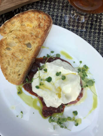 Chicago Food Guide featuring Burrata from Siena Tavern